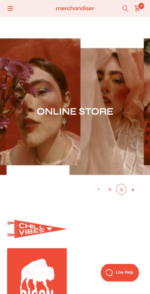 Merchandiser Theme Mobile